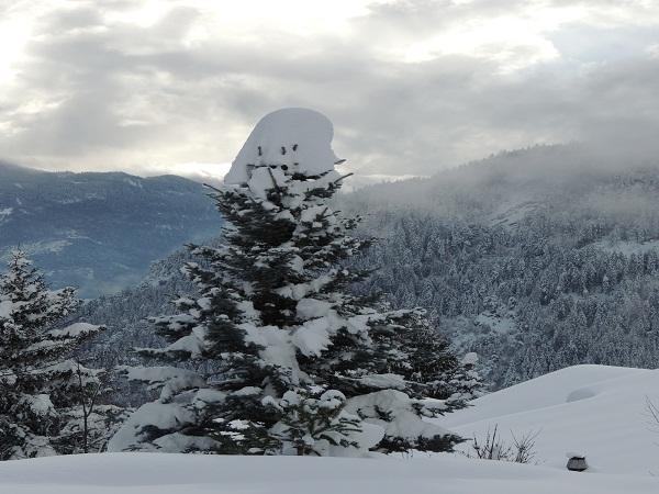 la neige à Prajaneli