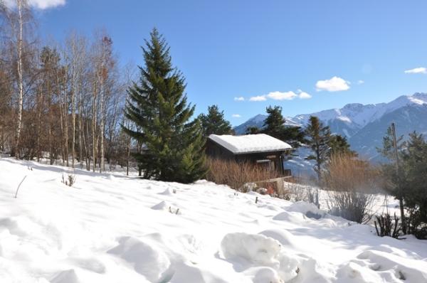 Prajaneli sous la neige